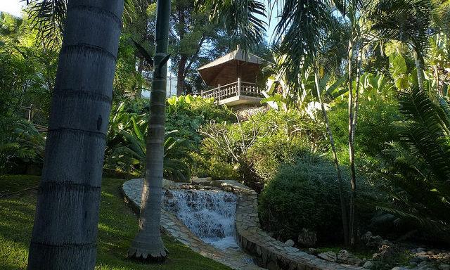 botanicheskij-sad-melnica-inkov