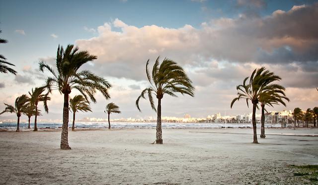 Пальмовые пляжи Эль-Ареналь
