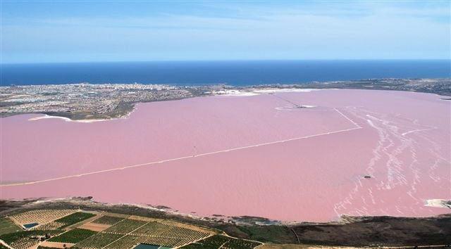 Розовое озеро в Торревьехе