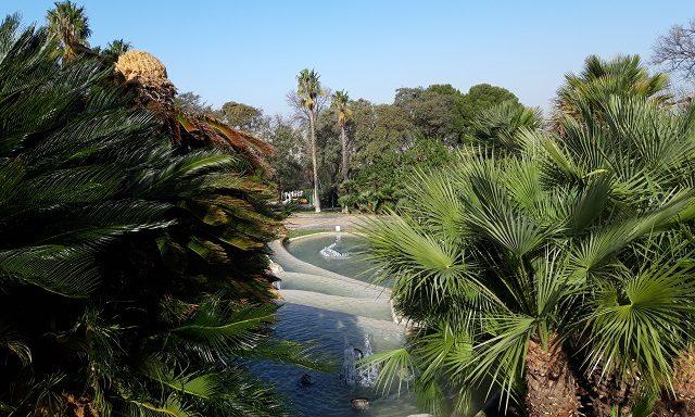 Ботанические сады Монжуика
