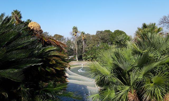 Ботанический сад на холме