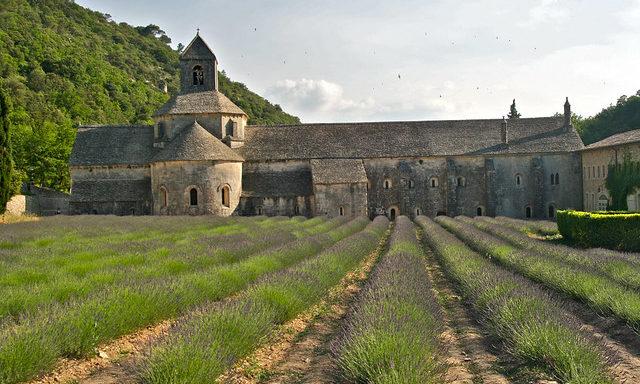 Вызревающие поля у аббатства Сенанк